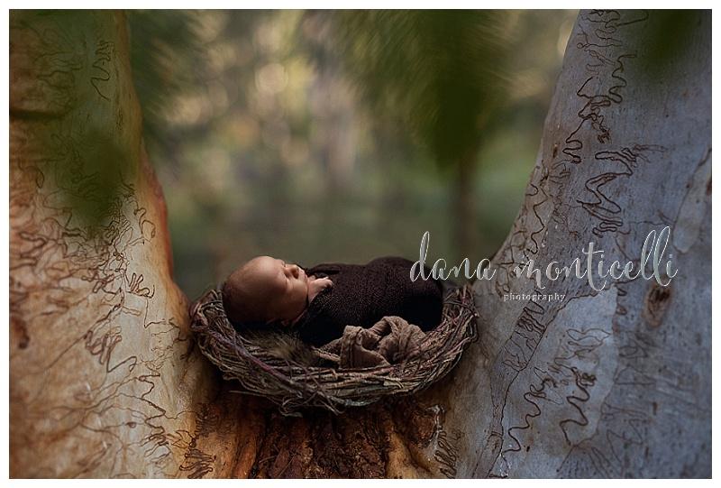 pittsburgh newborn