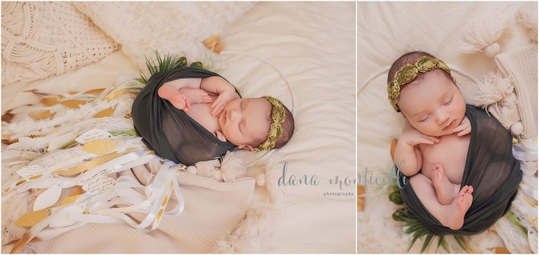 pittsburgh baby portraits
